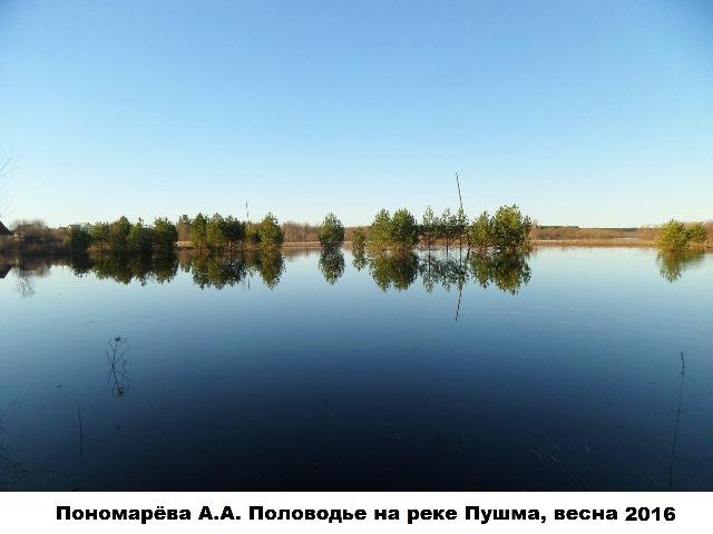 Пономарёва А.А. Половодье на реке Пушма, весна 2016